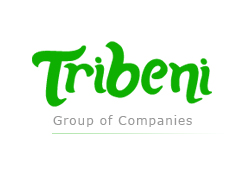 Tribeni Group Of Companies