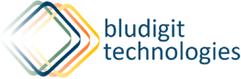 BludigIit Technologies